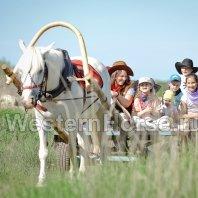 """Western Horse, """"Вестерн Хорс"""", конный клуб в Ломоносовском районе Ленинградской области"""