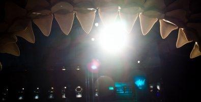 """""""Мир акул. Глубокое погружение"""", выставка для детей от 6 лет и взрослых в Музее артиллерии, СПб"""