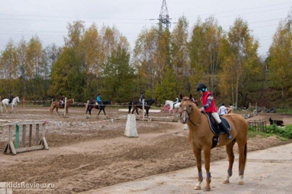 СДЮСШОР по конному спорту и современному пятиборью в Колтушах (д. Токкари)