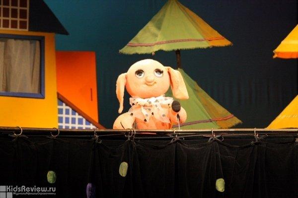 """""""Поросенок Чок"""", спектакль для детей 5-8 лет в Большом театре кукол, СПб"""