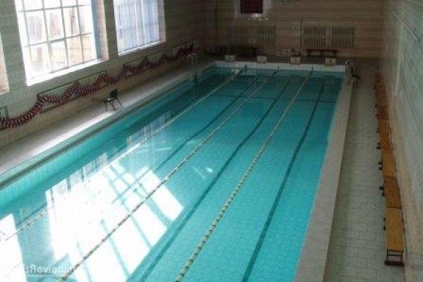 Дельфин, бассейн в Санкт-Петербурге