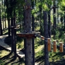 """""""Greenvald Парк Скандинавия"""", парк семейного активного отдыха в Ленинградской области"""
