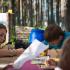 Дитя природы, ежегодный фестиваль в Ленобласти, фото