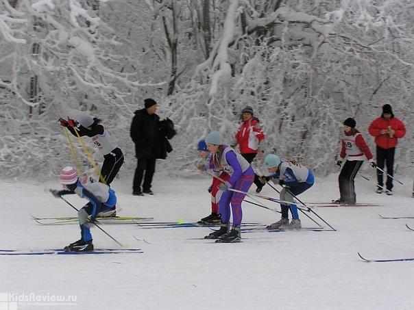 ДЮСШ Красносельского района (лыжные гонки, волейбол, гимнастика и др)