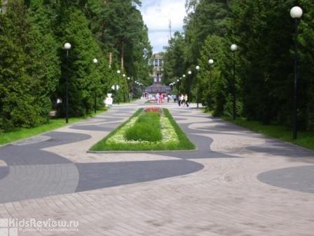 Зеленогорский парк культуры и отдыха (ЗПКиО), колесо обозрения в Зеленогорске