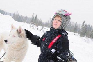Празднование Нового года с катанием на ездовых собаках хаски