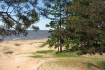 Где можно купаться в СПб с детьми? Пляжи Петербурга и Ленобласти летом 2014